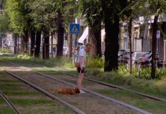 CANI-ROTAIE-324x223 A passeggio con il cane tra i binari del tram Costume e Società Cronaca Milano