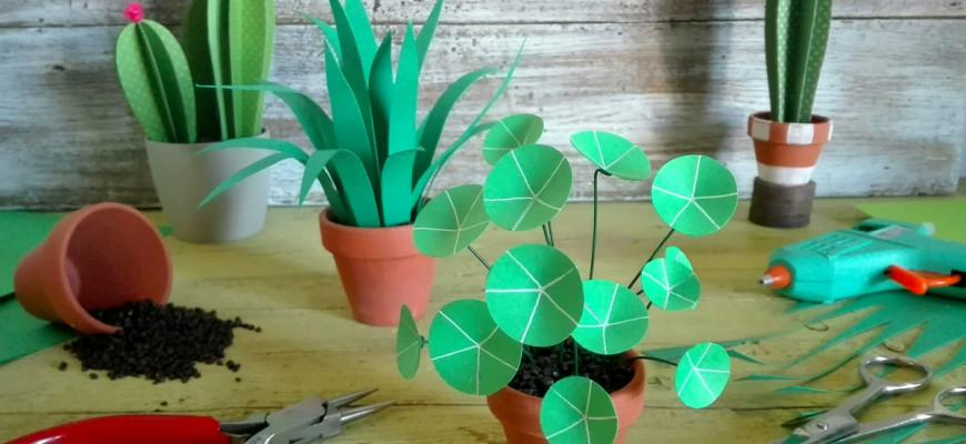 Viridea-Piante-DIY-Cartoncino-870x400 Ciclo di incontri creativi gratuiti per scoprire come realizzare piante di cartoncino in miniatura Intrattenimento tempo libero